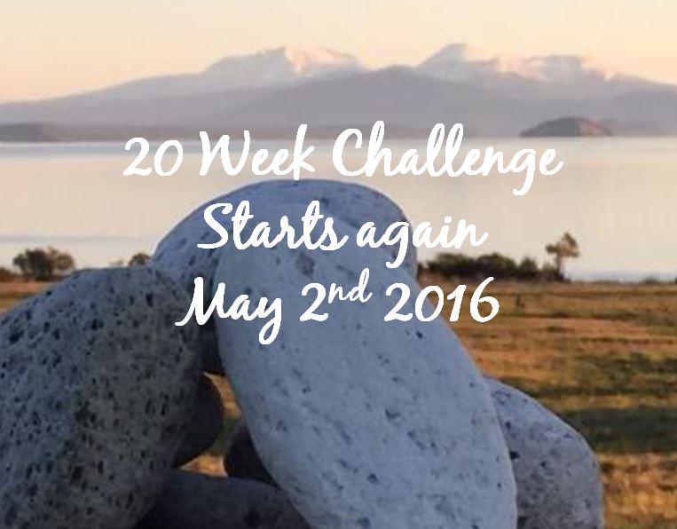 20 week challenge slide show front